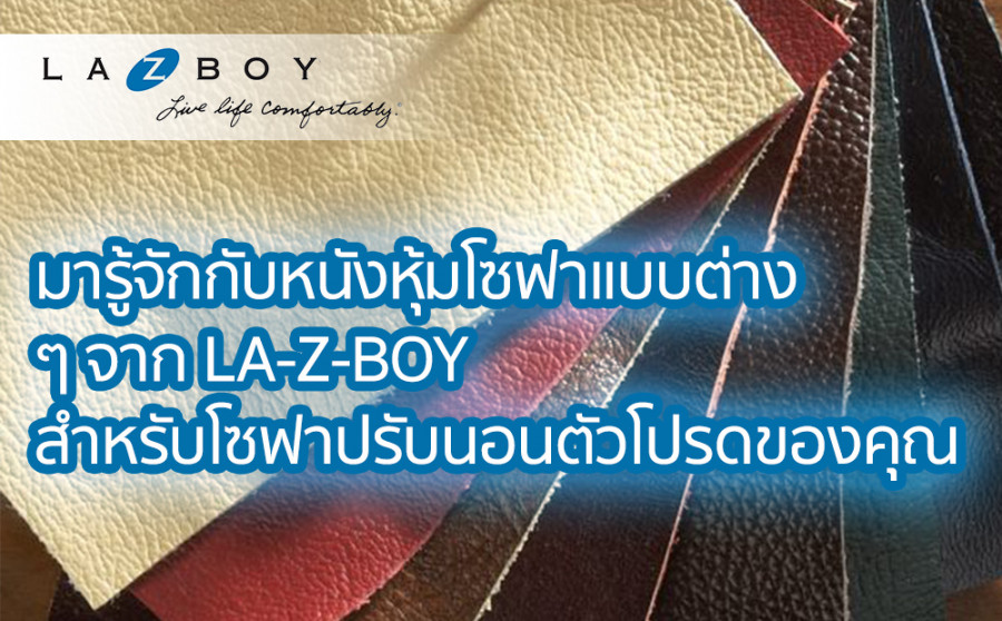 Let's learn more about recliner sofa's covers from La-Z-Boy